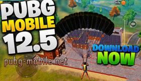 Download PUBG Mobile 0.12.5 Beta